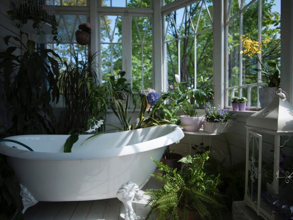 Mit Pflanzen verwandelt man das Badezimmer in einen Mini-Dschungel
