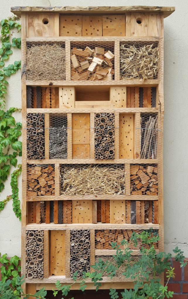 Mit selbst gebauten Hotels Insekten im Garten schützen
