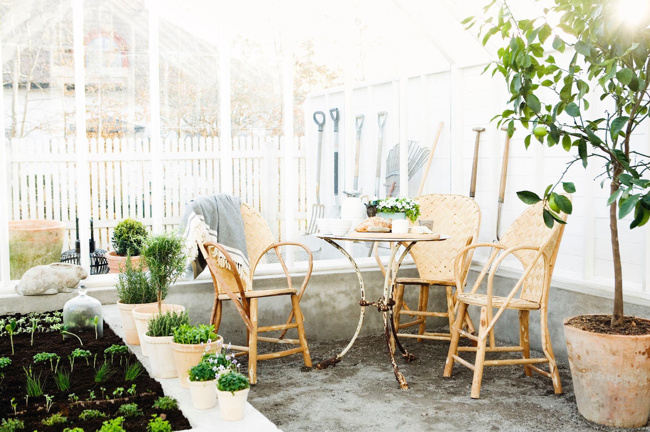 Was Pflanzen im Winterquartier jetzt brauchen
