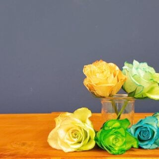 Gefärbte Rosen – so einfach geht es