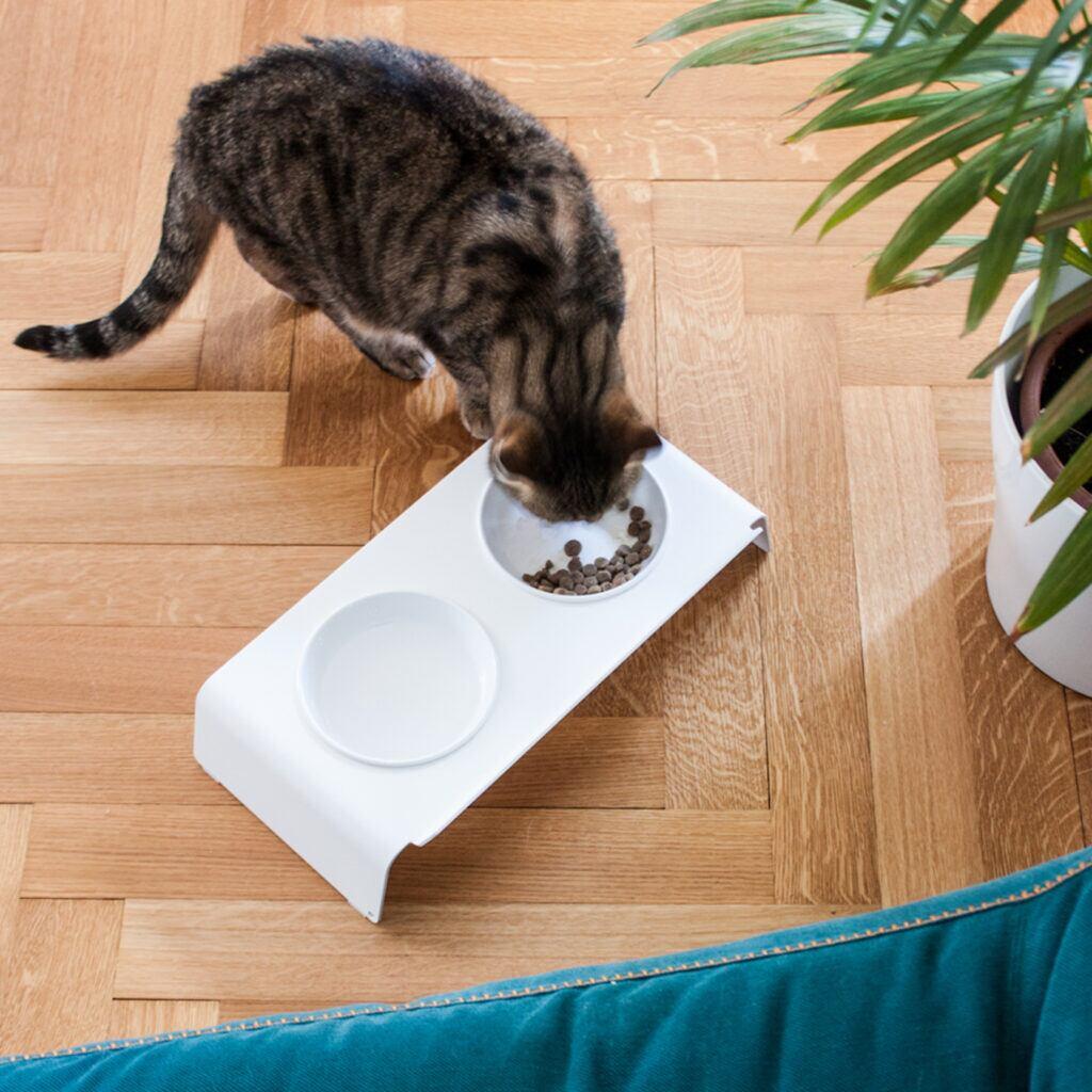 Zu den Designer-Möbeln für Katzen gehört auch eine Futterstation