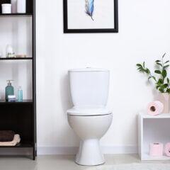 Dank des neuen Gadgets kann man der Toilette ein echtes Highlight verpassen