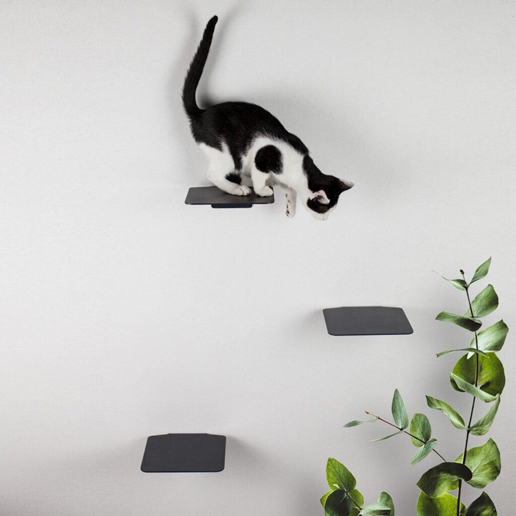 Eine edle Kletterwand für Katzen
