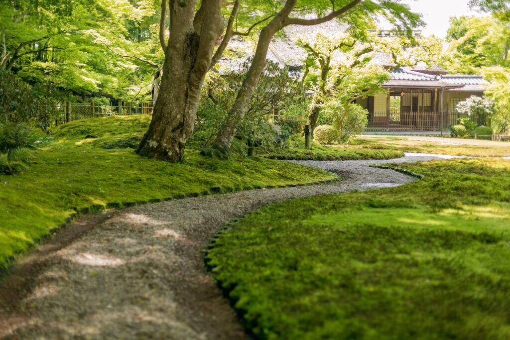 Ein Gartenweg mit Schüttgut ist weniger kompliziert und liefert ein ansprechendes Ergebnis