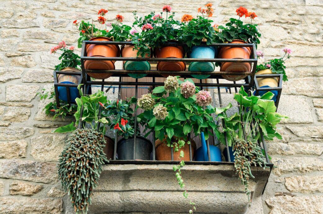 Wie man Blumenkästen und Blumentöpfe auf dem Balkon sichern kann