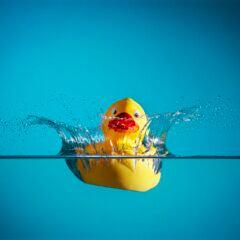 Eine Gummiente liebt das Wasser, muss aber regelmäßig gereinigt werden