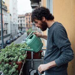 Wer haftet, wenn Gießwasser auf dem Balkon des Nachbarn Schaden anrichtet?