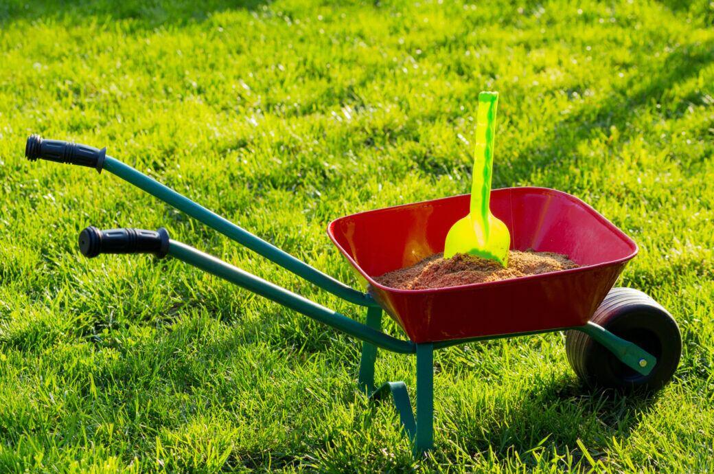 Rasen sanden: Was es bringt, wie man es macht