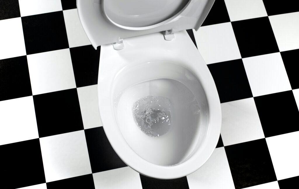 Wer die Toilette falsch spült, verteilt Keime im Bad