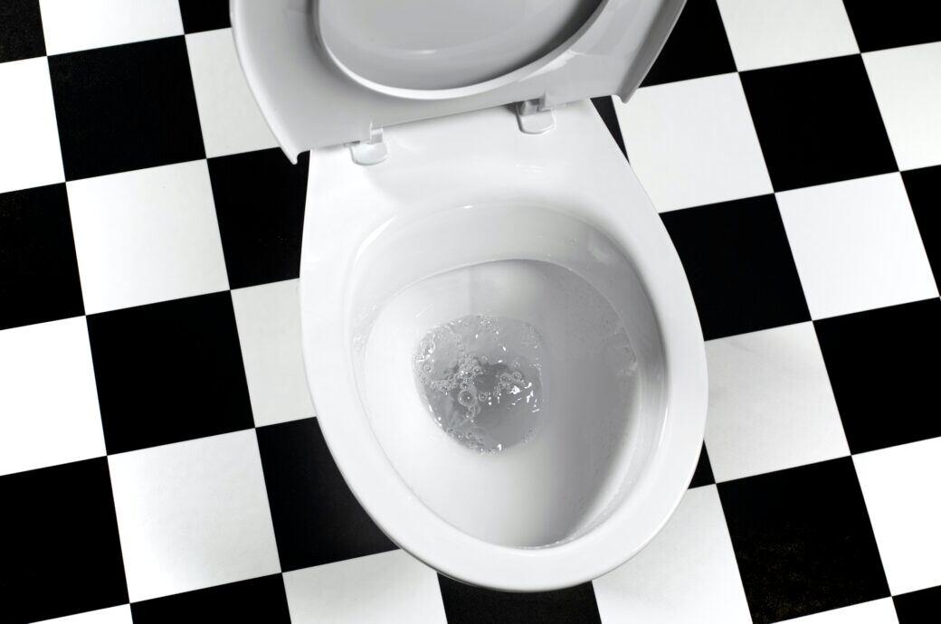 Virenschleuder: Eine Toilette mit aufgeklapptem Deckel
