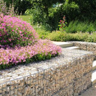 Gabionen im Garten bauen: Planung, Material, Kosten
