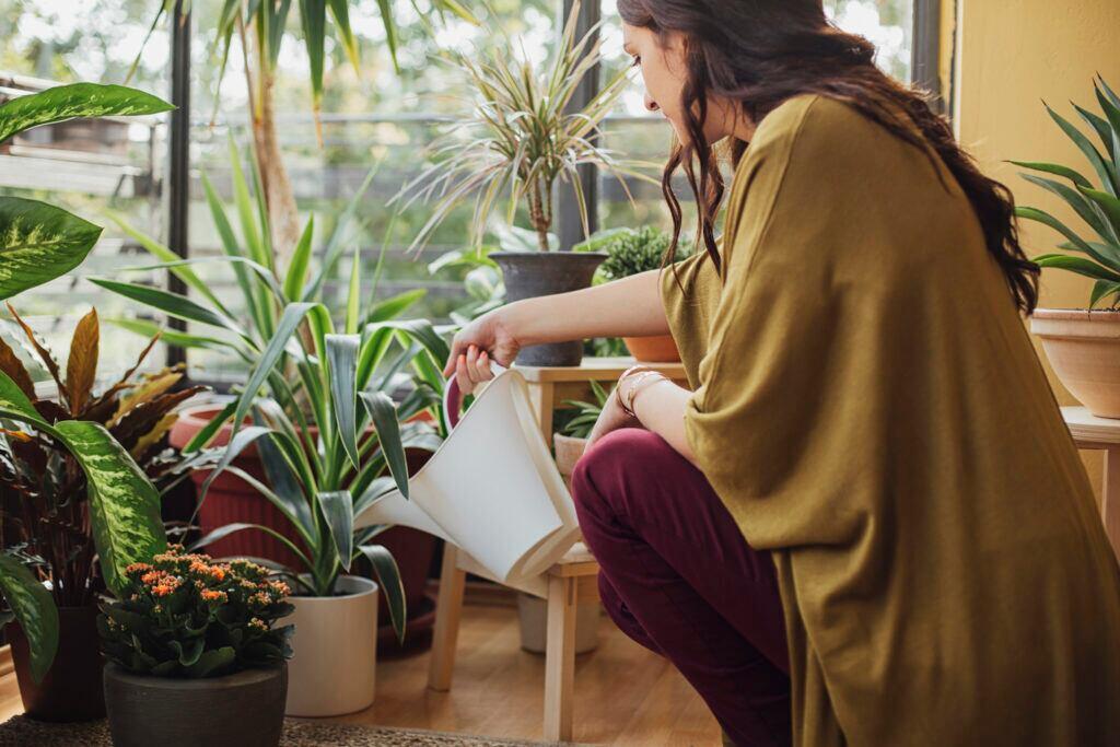 Frau gießt Topfpflanzen in der Wohnung