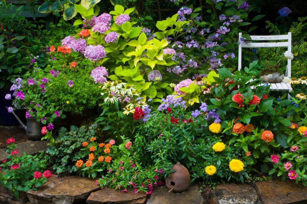 Blumenbeet im Garten anlegen – Tipps zu Standort, Pflanzen und Pflege