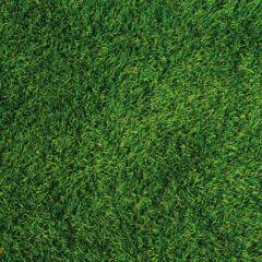 Ein Rasenrakel für einen perfekten Rasen verwenden
