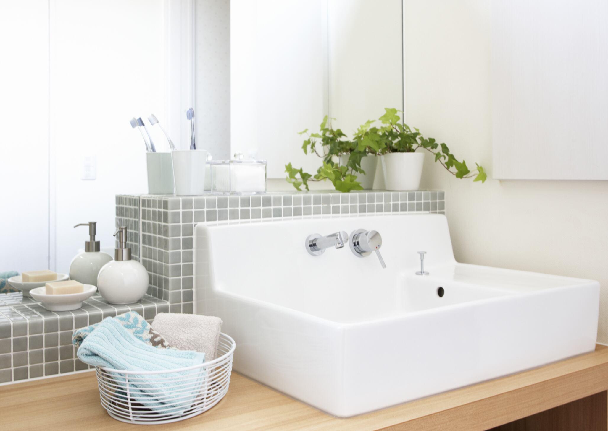 Pflanzen fürs Badezimmer – mit und ohne Fenster   myHOMEBOOK